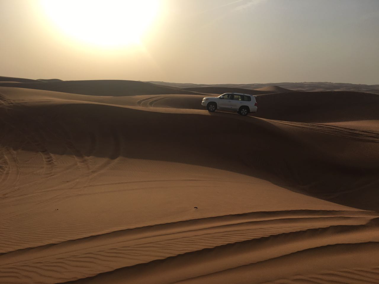 evening desert safari deals